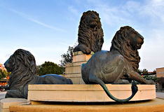 Fountain of lions stock photography