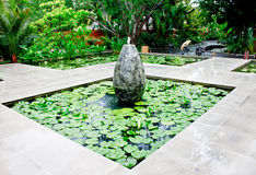 Fountain in lotus pond 3 Stock Photography