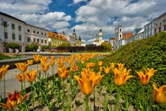 Tulip flowers at Banska Bystrica. Fountain at Namestie SNP square Banska Bystrica, Slovakia Royalty Free Stock Photos