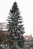 Fountain of the Neptune in Gdansk, Poland. Winter scenery with christmas tree Royalty Free Stock Images