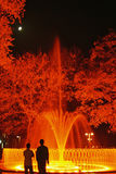Fountain by Night. And lighting moon Stock Photography