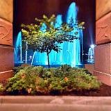 Fountain  at Night Royalty Free Stock Photo