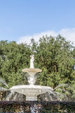 Fountain and Oak Tree Royalty Free Stock Image
