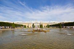 Fountain Oak in the upper garden of Peterhof in front of the Great Peterhof Palace, Petergof, Stock Images