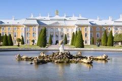 Fountain Oak in the upper garden of Peterhof in front of the Great Peterhof Palace, Stock Image