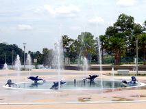 Fountain in park. Dolphine fountain in park Stock Photo