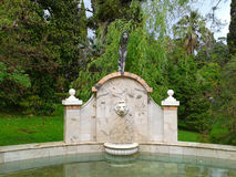 Fountain in park Dendrarium, Sochi. Fountain with pond in park Dendrarium, Sochi landmarks, green trees and lawns Royalty Free Stock Photography