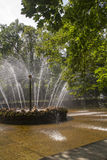 Fountain in the park of Peterhof Palace, St. Petersburg, Russia Royalty Free Stock Photos