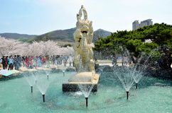 Cherry trees blooming in the park. Fountain in the park where people are seeing cherry trees blooming  in the Chinese city Dalian royalty free stock image