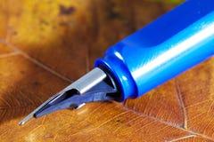Fountain pen Royalty Free Stock Photos
