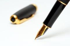 Fountain pen. On white background Stock Photography