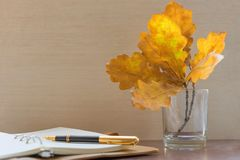 Fountain pen, personal diary and oak leaves. Still life stock photos