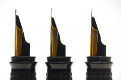 Fountain Pens. Three callligraphy fountain pen nibs against a white background Royalty Free Stock Photos