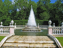 Fountain in Petergoph, Russia. Royalty Free Stock Photo