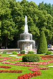 Fountain in peterhof Stock Images