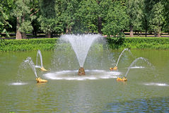 Fountain in Peterhof in St. Petersburg, Russia Stock Photography
