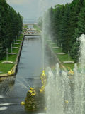 Fountain in Petrodvorets. (Peterhof), St Petersburg, Russia royalty free stock photo