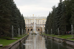 Fountain in Petrodvorets. Grand Cascade At Peterhof.Samson and the Lion ,Peters Palace ,Peterhof, St Petersburg, Russia Stock Photography