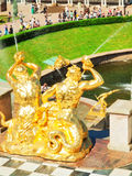 Fountain in Petrodvorets, St Petersburg Royalty Free Stock Photo