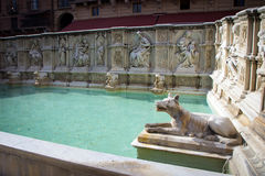 Fountain at Piazza del Campo in Siena Royalty Free Stock Photos