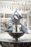 Fountain with pigeons Royalty Free Stock Photography