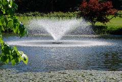 Fountain pond. Fountain splashin down onto a pond Royalty Free Stock Images
