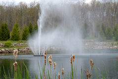 Fountain in Pond Stock Image