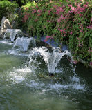 Fountain Pond. Singapore - August 2016  A pond at the Gardens by the Bay with a series of sparkling fountains before a wall overgrown with pink flowers Stock Photography