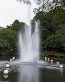 Fountain in Pukekura Park, New Plymouth New Zealand. Beautiful fountain in public park, festival of lights in New Plymouth, Taranaki, New Zealand stock images