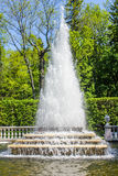 Fountain Pyramid (Peterhof) royalty free stock photo