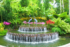 Fountain in the rainforest, Singapore. Multi level fountain in a park, Singapore Stock Image