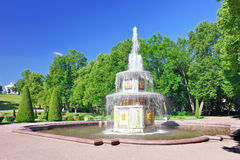 Fountain Roman  in Pertergof, Royalty Free Stock Images