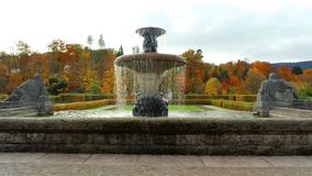 Fountain in the rose garden. stock video footage