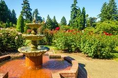 Fountain in a Rose Garden Royalty Free Stock Photos