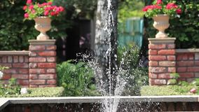 Fountain in the rose garden. Loop ready File soft focus stock video footage