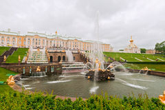 Fountain of Samson in Peterhof Royalty Free Stock Photo