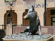 A fountain shaped as a wild swine in Sydney Stock Photography