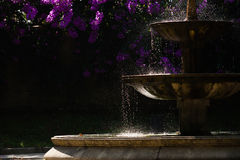 Fountain  silhouette. Drops of water and flowers in a public park in the northwest of spain, Santiago de Compostela Stock Photos