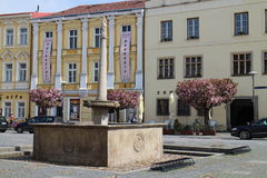 Fountain on square of peace in Slavonice Stock Photography