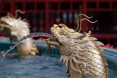 Fountain golden chinese dragon Stock Photography