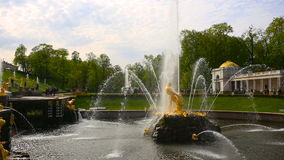 Fountain with statues in the Peterhof Palace complex. Saint Petersburg region, Russia stock video