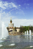 Fountain stone flower, Moscow Stock Photos