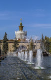 Fountain stone flower, Moscow Royalty Free Stock Images