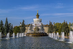Fountain stone flower, Moscow Stock Photography