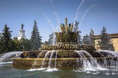 Fountain stone flower in VDNH exhibition in Moscow Royalty Free Stock Photo