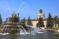 Fountain stone flower in VDNH exhibition in Moscow Stock Photo