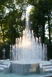 Fountain in summer garden. Saint Petersburg stock photo