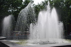 Fountain. Summer. A fountain is in a municipal park Stock Photography