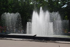 Fountain. Summer. A fountain is in a municipal park Royalty Free Stock Photo