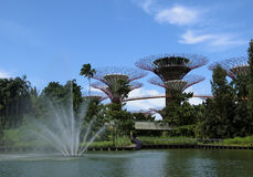 Fountain and the Super Trees Stock Image